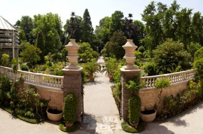 Collegamento a The 2020 Index Seminum of the Botanical Garden and the richness of biological diversity