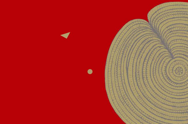 Collegamento a 29th Kanizsa Lecture - Michael Herzog: The Irreducibility of vision