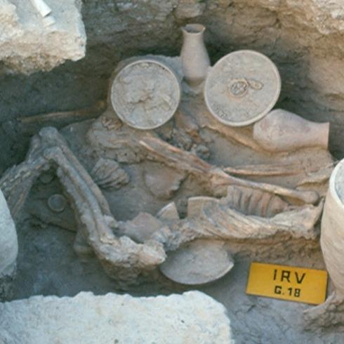 Ancient DNA: this is who we are