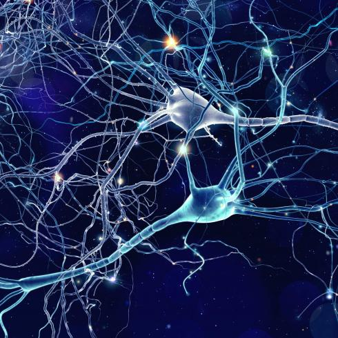 """Artificial neurons for """"intelligent"""" neuroprostheses"""