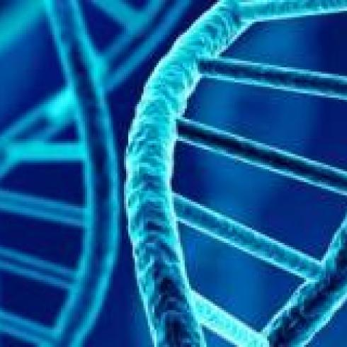 The UniPD research team creates synthetic genomes for imaginary humans