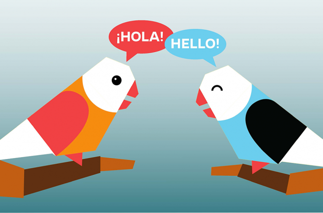 Collegamento a Conversazioni CreAttive: an alternative way of practicing your foreign language speaking skills