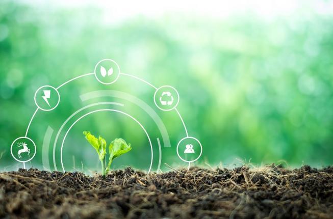 Collegamento a Economia circolare e nuovi modelli di sostenibilità. A Padova un nuovo centro di Ateneo