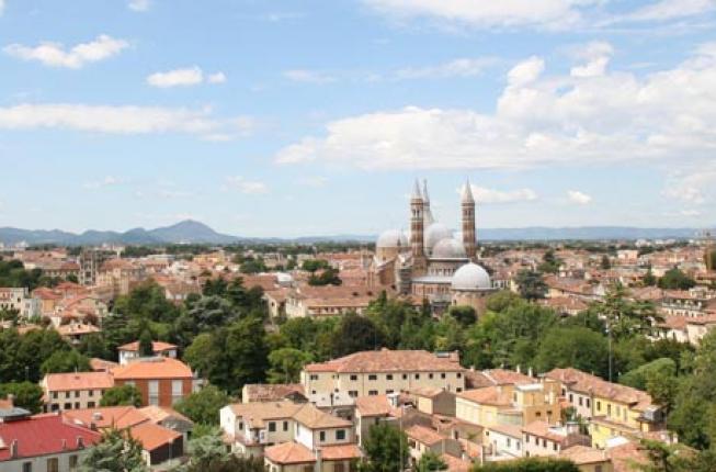 Collegamento a Il punto sul verde di Padova: lo studio del Dipartimento Icea Unipd