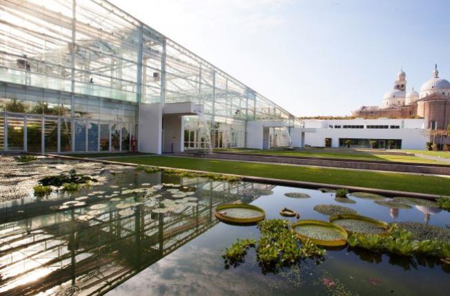 Collegamento a Una nuova primavera per l'Orto botanico e Villa Parco Bolasco