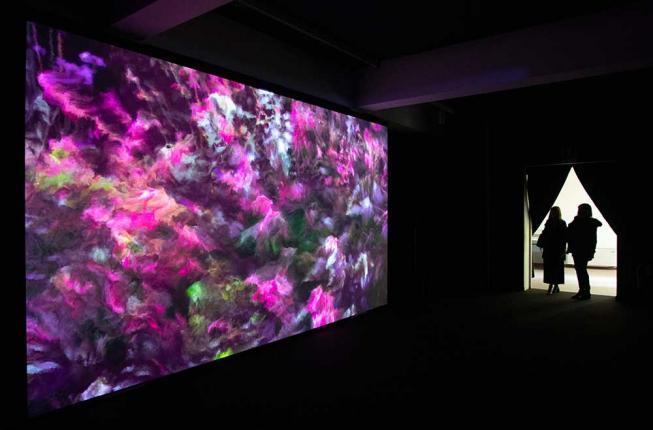 Collegamento a In mostra all'Orto botanico, la 'Seconda natura' di Quayola