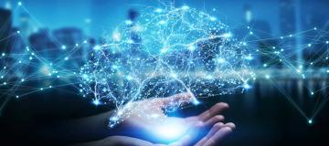 cervelli digitali
