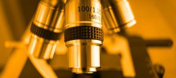 miscroscopio